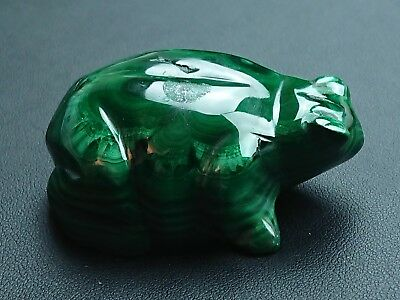 Malachite 110 grammes Grenouille - Natural frog Malachite