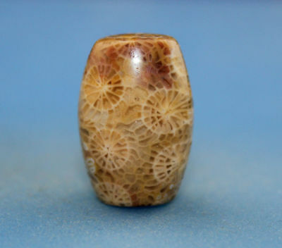 22*15 mm Antique Dzi Agate old  Bead  from Tibet ***Free shipping***