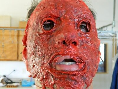 HALLOWEEN HORROR MOVIE PROP - Bloody Skinned Face Mask