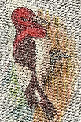 Vintage tobacco cigarette silk -use in crazy quilt - BIRD: RED-HEADED WOODPECKER