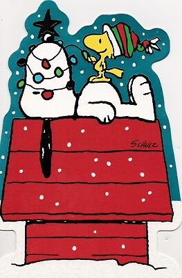 Peanuts Snoopy & Woodstock On Kennel With Xmas Lights Christmas Card