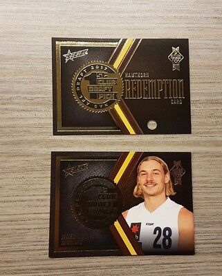2017 Afl Future Force Hawthorn James Worpel 1St Draft Pick Redemption 019 / 80