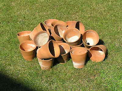 4 inch old straight sided hand made frost proof clay flower pots plant auricula