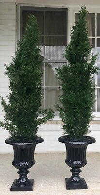 Pair Of Black Urns With Artificial Pine Christmas Trees