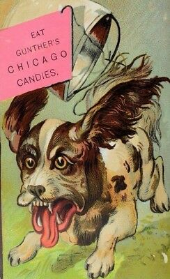 1881 Gunther's Chicago Candies Scared Dog Running Pail Tied to Tail P61