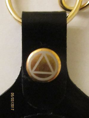 alcoholics anonymous, key ring, leather, Medallion holder