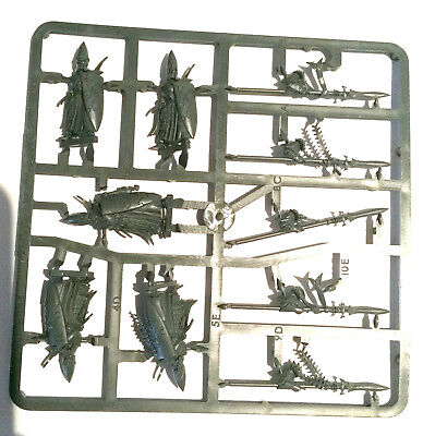 Warhammer Fantasy 9th Age High Elves Lorthern Sea Guard Spire Guard
