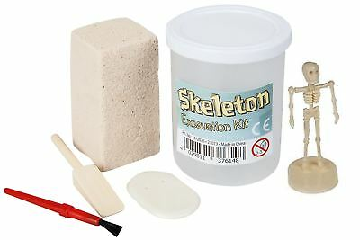 Skeleton Excavation Kit Dig Out Your Own Mini Human Fossil Figure Model