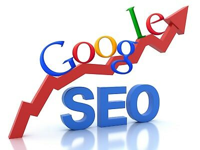 Drive 1000+ keyword targeted Google Search visitors to your website