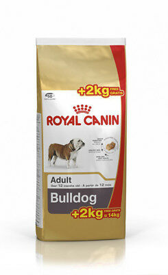 Royal Bulldog Adult 12+2Kg