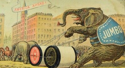 1880's Willimantic Thread Jumbo The Elephant Tied To Giant Spools Downtown P71