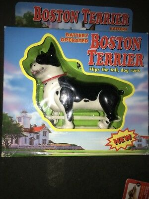 Boston Terrier Battery Operated Flips Tail and Runs Fun Interact with your Dog