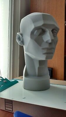 asaro planes of the head mannequin art