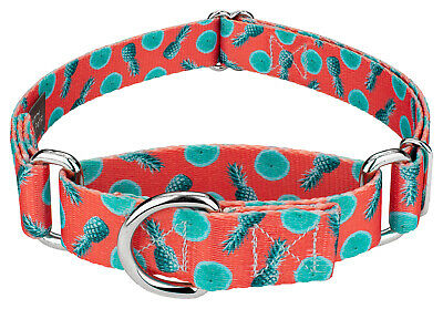 Country Brook Petz® Martingale Dog Collar - Summer Breeze Collection