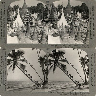 19 Stereofotos Motive um 1900, Ceylon Sri Lanka Burma Birma Myanmar, Stereoviews