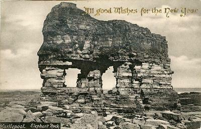 Printed Postcard Of The Elephant Rock, Hartlepool, County Durham By Frith