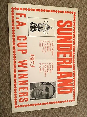 Sunderland AFC 1973 FA Cup Final Winners Poster