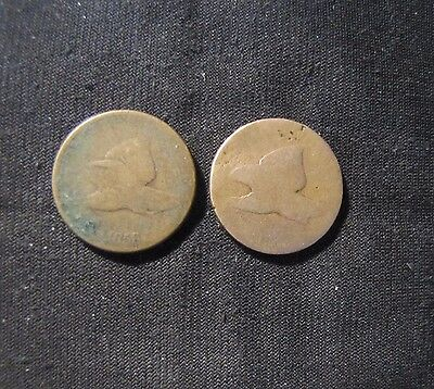 Lot of 2 1858 Flying Eagle Cents