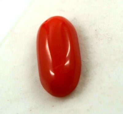 Awesome Looking 8.20  CT Natural Nice Looking Oval Shape Red Coral Gems