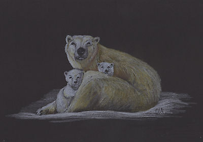 Vg586 Original Coloured Graphite Drawing Of A Polar Bear With Cub