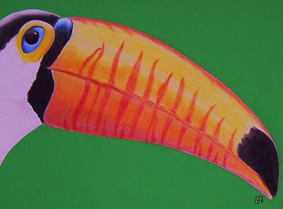 Vg353 Original Coloured Pencil Drawing Of A Toco Toucan