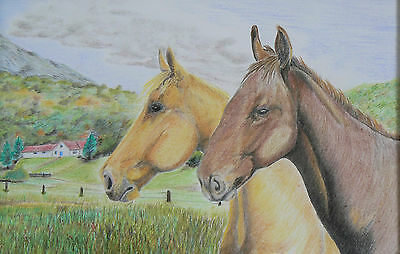 Vg302 Original Coloured Pencil Drawing Of A Pair Of Horses