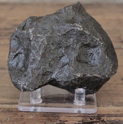 1590gm Campo del Cielo Meteorite (From One of the Finest Meteor Falls)