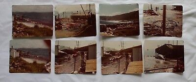 Vintage antique retro photos x 8 Whale being slaughtered 1970's