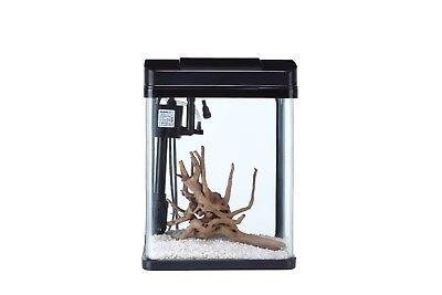Glass Fish Tank 2.5 Gallons With LED Lighting System: Curved Corner Aquarium