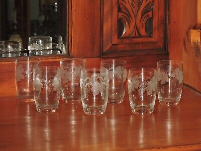 7  Bohemia Whiskey / Water Glasses  Etched GRAPEVINE Design