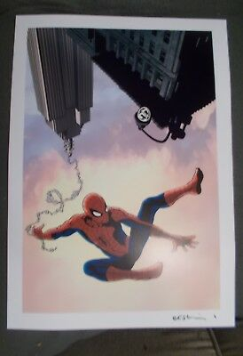 spiderman signed print