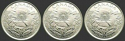 Canada Remembrance 2015 Poppy, Set of Three Coins!!