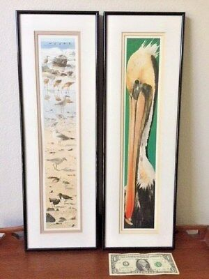 Prints(2), Shore Birds,Framed & double matted, Decorator post 1940,United States