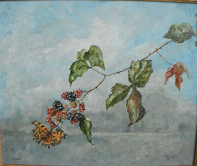 COURTENAY HOSKING - COMMA (Butterfly) ON BRAMBLE - oil on canvas framed