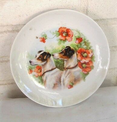 Exquisite Terrier Dogs Flowers Bee Old Hand Painted Porcelain Plate Germany