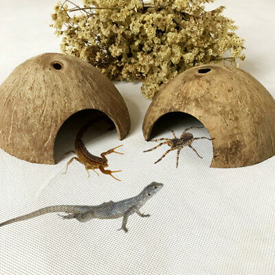 Natural Reptile Hide Small Animal Habitat Coconut Shell Lizard Spider Cave House