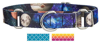 Country Brook Petz™ Martingale Dog Collar - Hot Fashion Collection