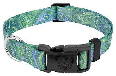 Country Brook Design® Deluxe Dog Collar - Paisley Collection