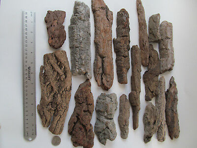 100% Natural Athentic Drift Wood lot of 16 Ancient Tree Bark... Great pieces..