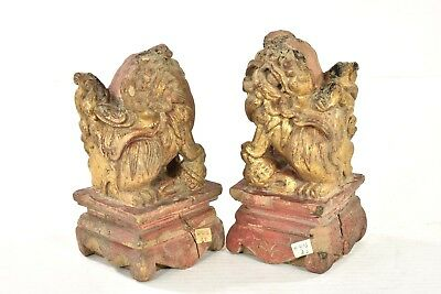 Pair of Antique Chinese Gilt /Gilded Wooden Carved Statue Foo Dog Lion, 19th c