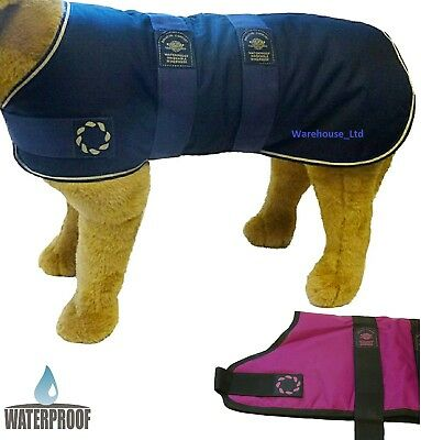 Outhwaite Waterproof Padded Dog Puppy Weather Coat Blue Pink - High Quality