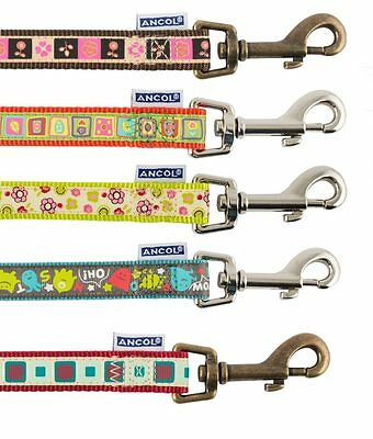 Ancol Dog Leads ,Teal Monsters , Lime Flowers, Orange, Chocolate, Claret Square