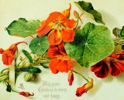 1880's May Your Christmas be Merry & Happy J.N. Adam & Co., Victorian Card #E