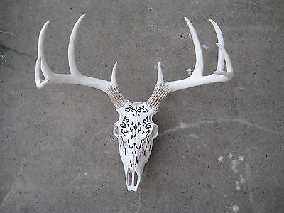 Deer Skull with Pattern  WALL MOUNT TAXIDERMY CABIN LODGE LOG WALL MOUNT DECOR