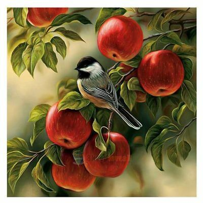 5D DIY diamond painting bird and apple tree embroidery cross-stitch home de H9O1