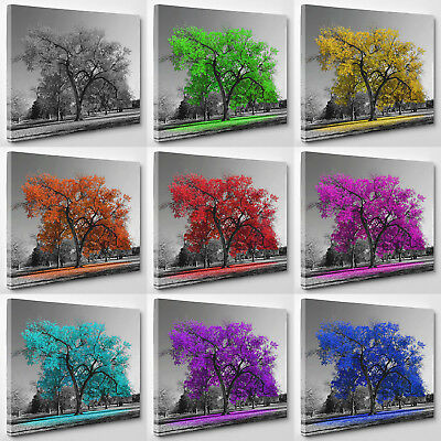 Tree Colored Leaves Black White Nature Canvas Print Wall Art Ready To Hang A1 A2