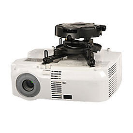 PRG Precision Projector Mount with Spider Universal Adaptor Plate, Black, Lot of