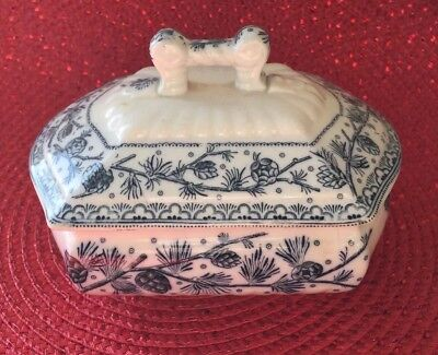 Antique 1880-1890 W. H. Grindley OXFORD Vanity butter box pine cones pattern