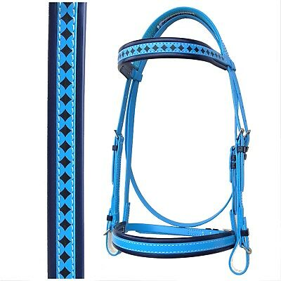 PVC Horse Bridle - Cyan Blue & Navy - Cavesson