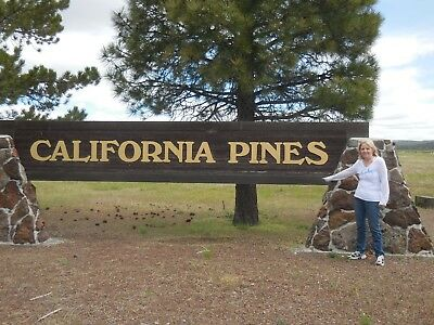California Pines 0.92 Acre Lot In Lake Unit 2 With Owner Financing Available